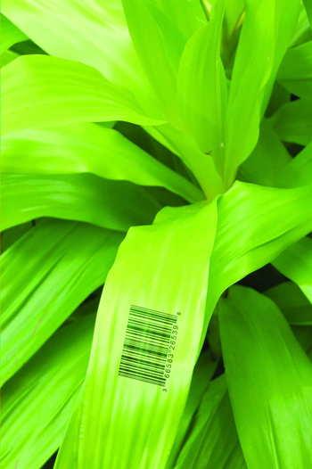 1_barcoded_leaf_2_usbg