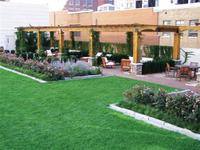 909walnut_green_roofs_small